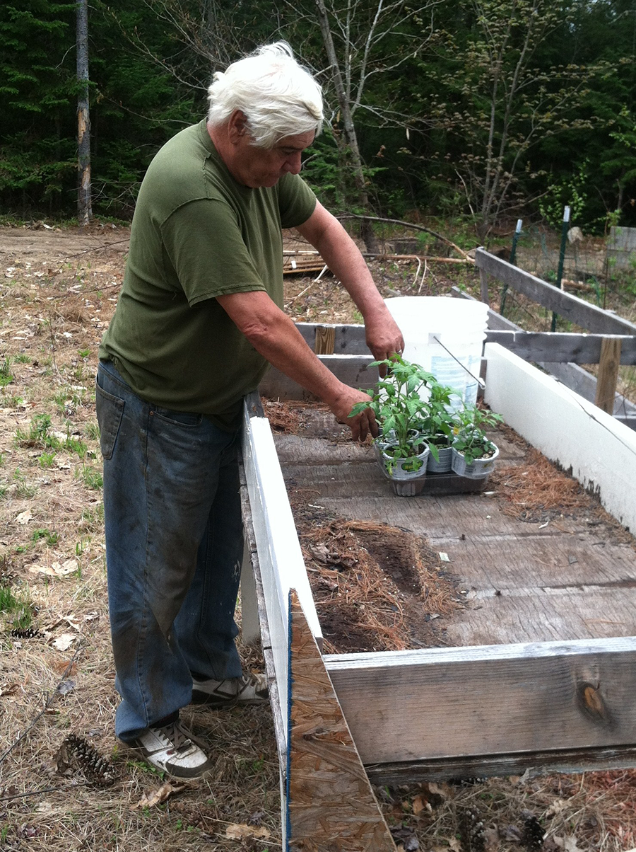 Jean Courcy working with some of his seedlings